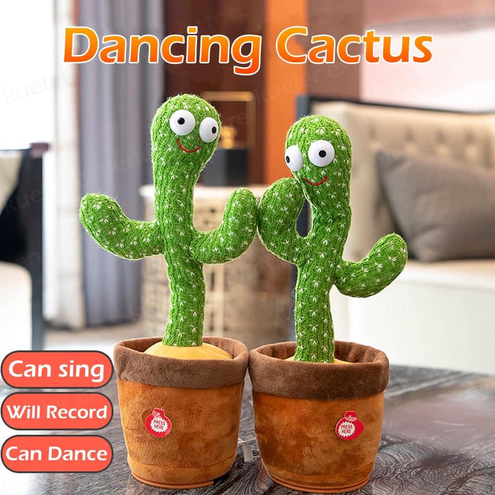 Cây phát nhạc và nhái giọng hình xương rồng nhảy múa
